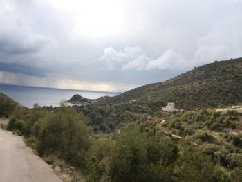Ammousso, Vassiliki
